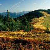 Image: Gorce and Island Beskids